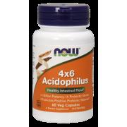 Acidophilus 4x6 60 caps / Ацидофилус