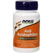 Acidophilus 4x6 60 caps