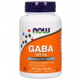 GABA 500 mg 100 caps / ГАМК - Гамма-аминобутириновая кислота